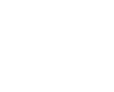 imag termite