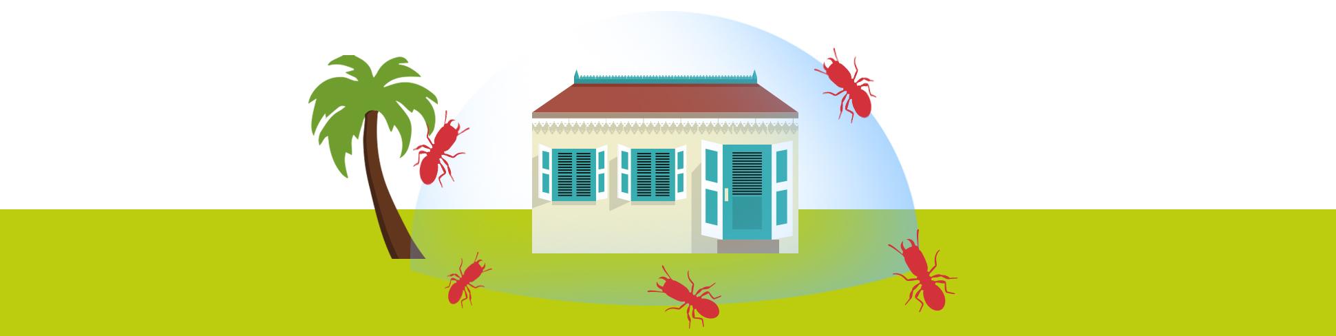 Suprim nuisibles termites